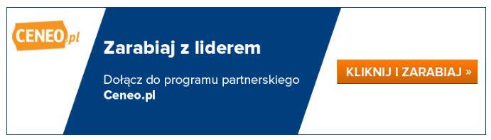 Programy partnerskie podłączania